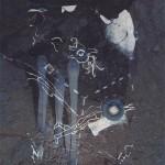 Ulrich Zieger: schwarzland