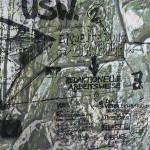 Mashup von Juliane Duda zu dem Buch von Klaus Michael & Thomas Wohlfahrt (Hrsg.): Vogel oder Käfig sein