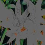 Mashup von Juliane Duda zu dem Buch von Jannis Ritsos: Deformationen