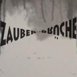 Mashup von Juliane Duda zu dem Buch von Sarah Kirsch: Zaubersprüche