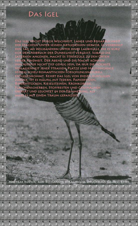 """Bild von Juliane Duda mit den Übermalungen von C.M.P. Schleime und den Texten von Andreas Koziol aus seinem Bestiarium Literaricum. Hier """"Das Igel""""."""