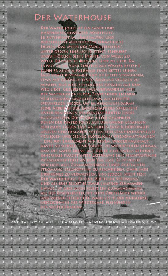 """Bild von Juliane Duda mit den Übermalungen von C.M.P. Schleime und den Texten von Andreas Koziol aus seinem Bestiarium Literaricum. Hier """"Der Waterhouse""""."""