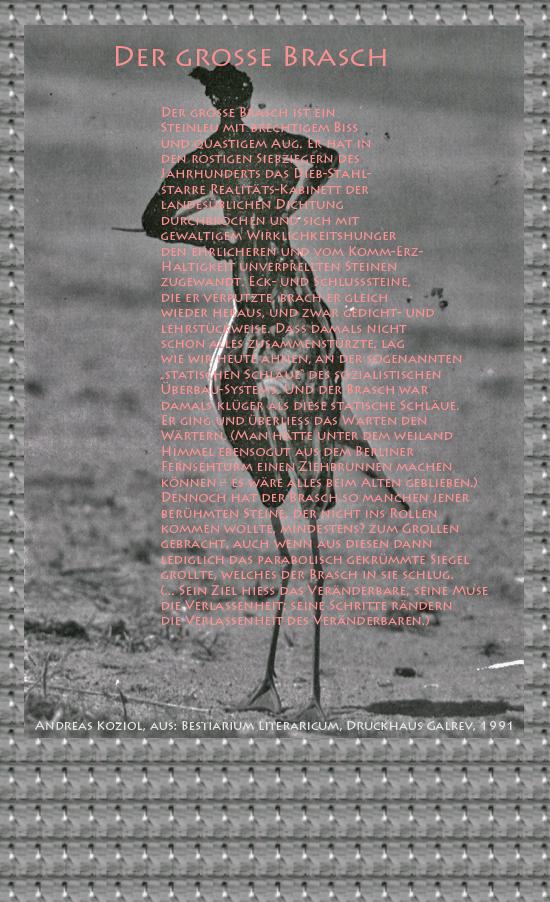 """Bild von Juliane Duda mit den Übermalungen von C.M.P. Schleime und den Texten von Andreas Koziol aus seinem Bestiarium Literaricum. Hier """"Der große Brasch""""."""