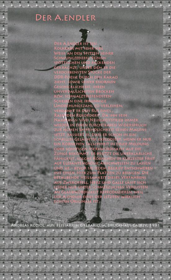 """Bild von Juliane Duda mit den Übermalungen von C.M.P. Schleime und den Texten von Andreas Koziol aus seinem Bestiarium Literaricum. Hier """"Der A.endler""""."""