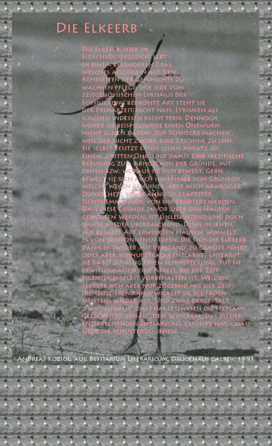 """Bild von Juliane Duda mit den Übermalungen von C.M.P. Schleime und den Texten von Andreas Koziol aus seinem Bestiarium Literaricum. Hier """"Die Elkeerb""""."""