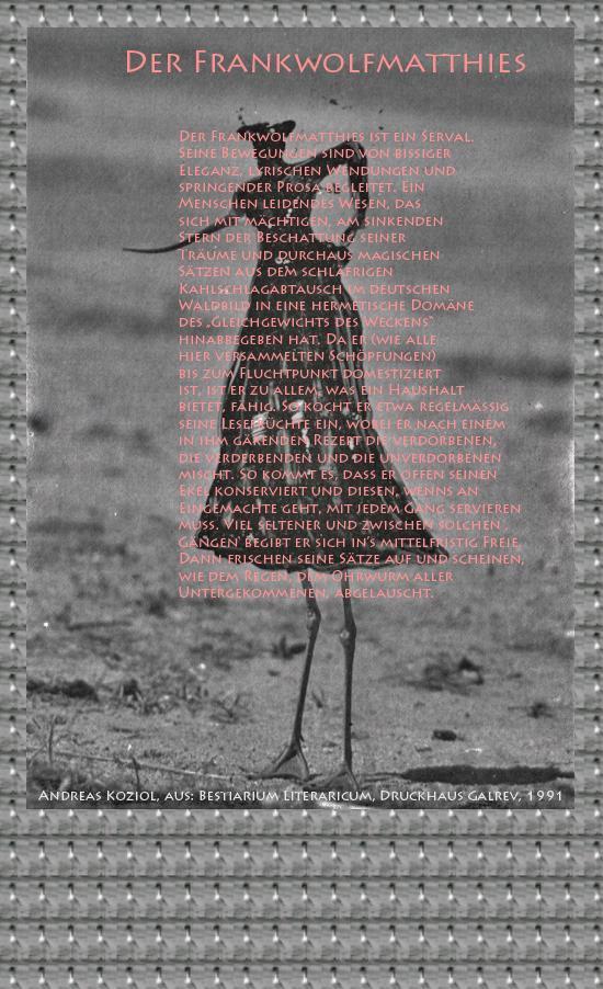 """Bild von Juliane Duda mit den Übermalungen von C.M.P. Schleime und den Texten von Andreas Koziol aus seinem Bestiarium Literaricum. Hier """"Der Frankwolfmatthies""""."""