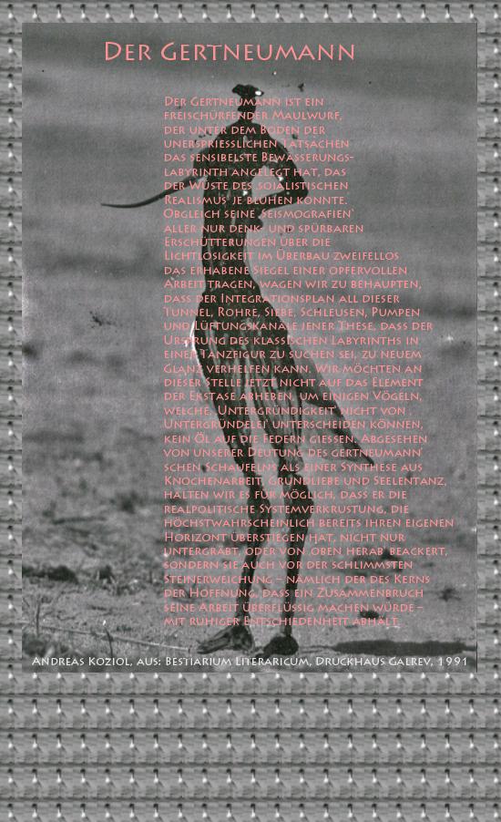 """Bild von Juliane Duda mit den Übermalungen von C.M.P. Schleime und den Texten von Andreas Koziol aus seinem Bestiarium Literaricum. Hier """"Der Gertneumann""""."""