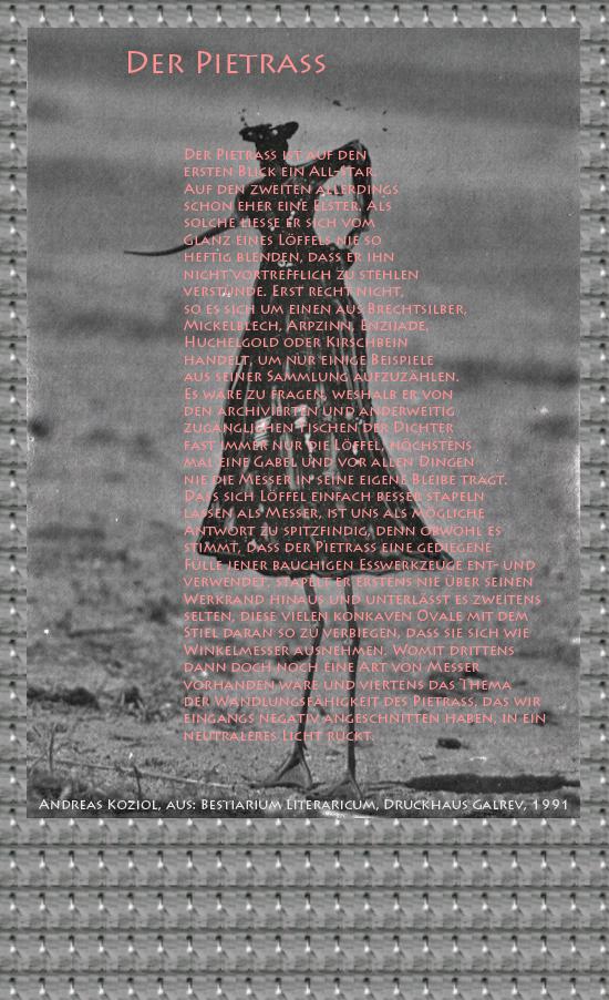"""Bild von Juliane Duda mit den Übermalungen von C.M.P. Schleime und den Texten von Andreas Koziol aus seinem Bestiarium Literaricum. Hier """"Der Pietraß""""."""