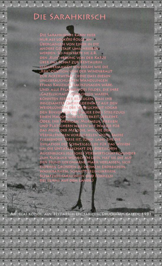 """Bild von Juliane Duda mit den Übermalungen von C.M.P. Schleime und den Texten von Andreas Koziol aus seinem Bestiarium Literaricum. Hier """"Die Sarahkirsch""""."""
