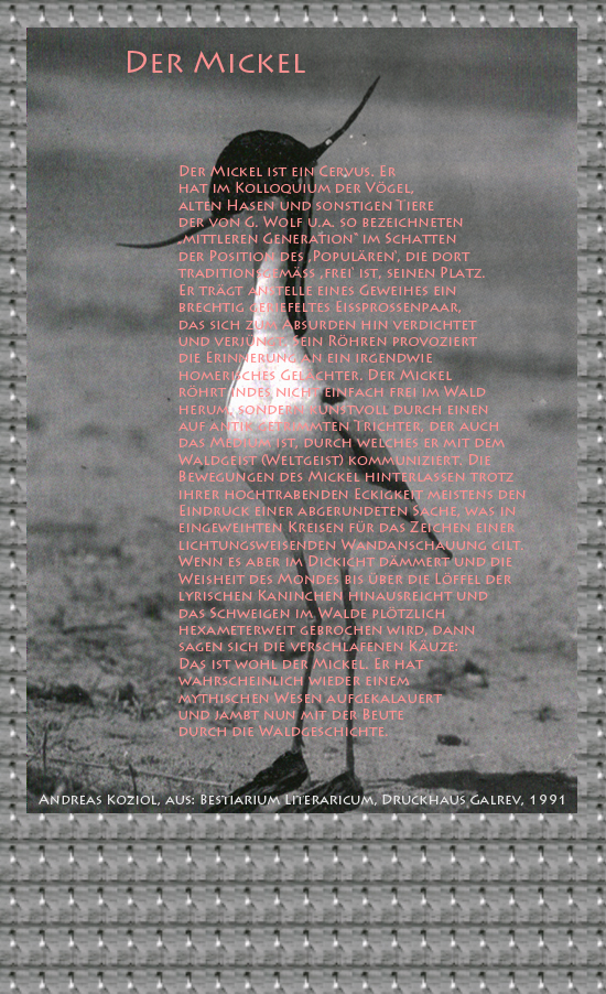 """Bild von Juliane Duda mit den Übermalungen von C.M.P. Schleime und den Texten von Andreas Koziol aus seinem Bestiarium Literaricum. Hier """"Der Mickel""""."""