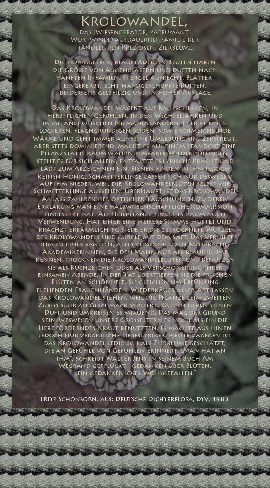 """Bild von Juliane Duda mit den Texten von Fritz Schönborn aus seiner Deutschen Dichterflora. Hier """"Krolowandel""""."""