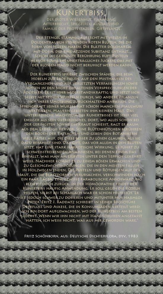 """Bild von Juliane Duda mit den Texten von Fritz Schönborn aus seiner Deutschen Dichterflora. Hier """"Kunertbiß""""."""