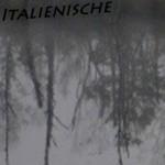 Mashup von Juliane Duda zu dem Buch von Hans Hinterhäuser: Italienische Lyrik im 20. Jahrhundert