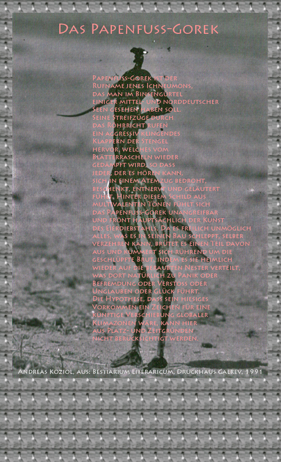 """Bild von Juliane Duda mit den Übermalungen von C.M.P. Schleime und den Texten von Andreas Koziol aus seinem Bestiarium Literaricum. Hier """"Das Papenfuß-Gorek""""."""