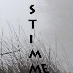Mashup von Juliane Duda zu dem Buch von Wolfgang Hilbig: STIMME STIMME
