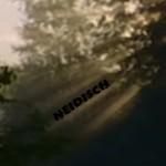 Norbert Hinterberger: Keine Angst ich bin nur neid...