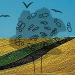 Mashup von Juliane Duda zu dem Buch von Rainer Stolz & Udo Wenzel (Hrsg.): HAIKU hier und heute