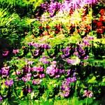 Mashup von Juliane Duda zu dem Buch von Allen Ginsberg: Poesiealbum 127