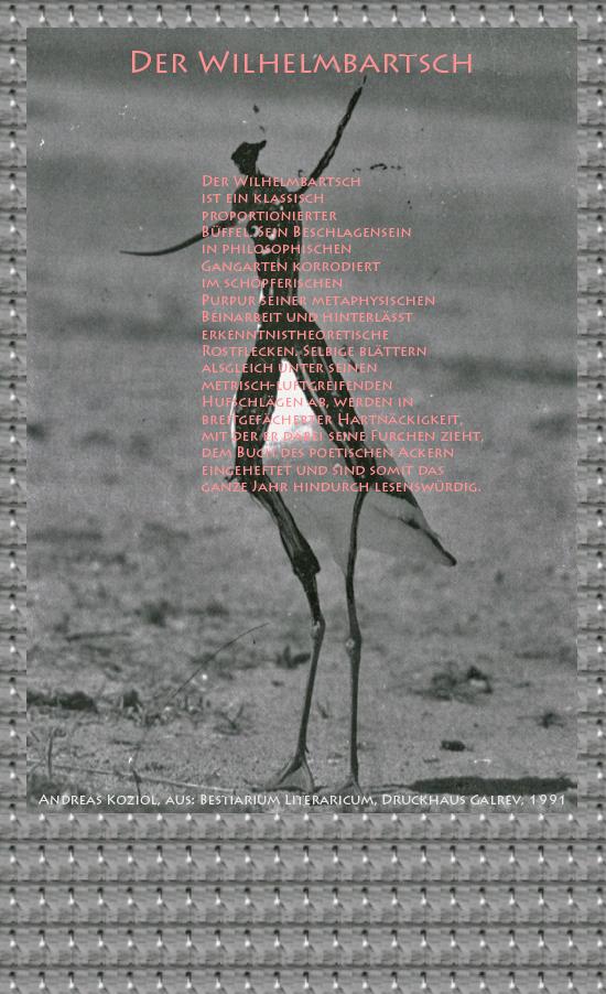 """Bild von Juliane Duda mit den Übermalungen von C.M.P. Schleime und den Texten von Andreas Koziol aus seinem Bestiarium Literaricum. Hier """"Der Wilhelmbartsch""""."""