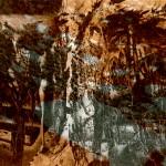 Peter Gosse: Poesiealbum 252