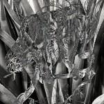 Mashup von Juliane Duda zu dem Buch von Itzik Manger: Poesiealbum 205