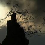 Marin Sorescu: Poesiealbum 197
