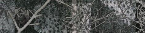 Julian Przyboś: Poesiealbum 147