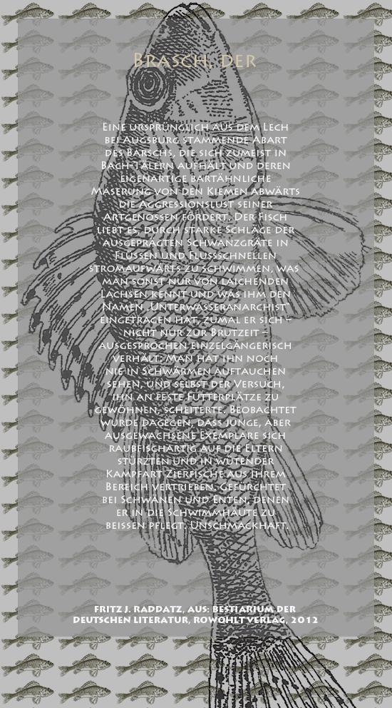 """Bild von Juliane Duda mit den Zeichnungen von Klaus Ensikat und den Texten von Fritz J. Raddatz aus seinem Bestiarium der deutschen Literatur. Hier """"Brasch, der""""."""