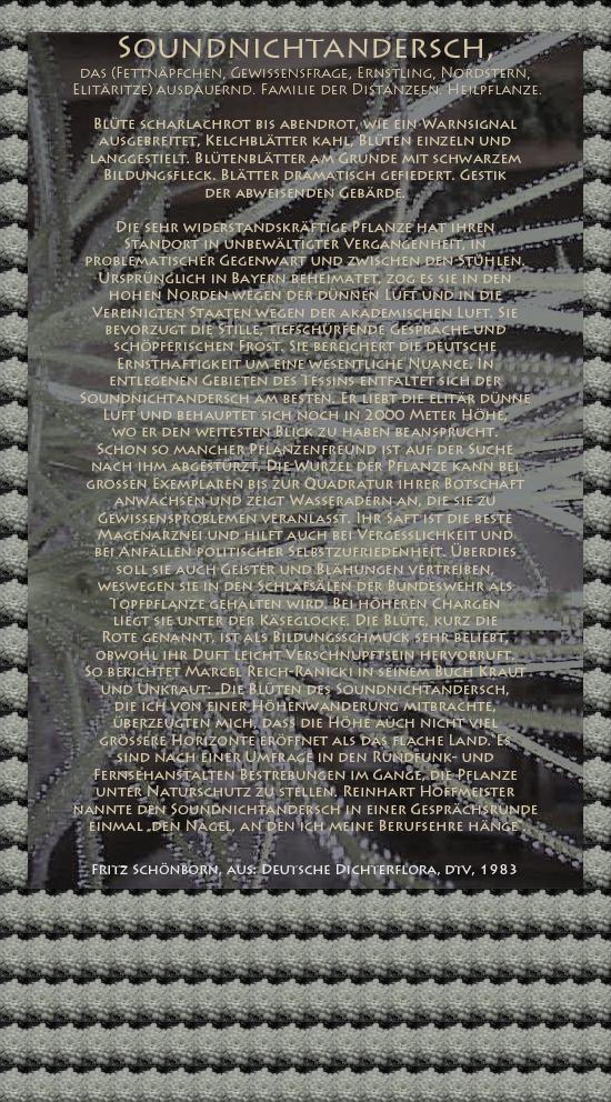 """Bild von Juliane Duda mit den Texten von Fritz Schönborn aus seiner Deutschen Dichterflora. Hier """"Soundnichtandersch""""."""