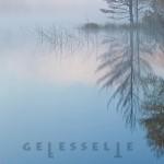 Mashup von Juliane Duda zu dem Buch von Wulf Kirsten und Annette Seemann (Hrsg.): Der gefesselte Wald