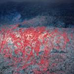 Bea Emsbach: Ereignisse im Schatten