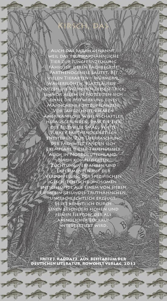 """Bild von Juliane Duda mit den Zeichnungen von Klaus Ensikat und den Texten von Fritz J. Raddatz aus seinem Bestiarium der deutschen Literatur. Hier """"Kirsch, das""""."""