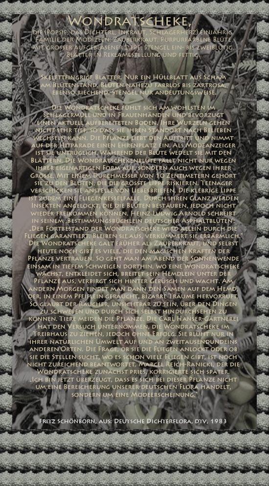 """Bild von Juliane Duda mit den Texten von Fritz Schönborn aus seiner Deutschen Dichterflora. Hier """"Wondratscheke""""."""