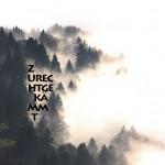 Mashup von Juliane Duda zu dem Buch von Fritz Deppert, Christian Döring, Hanne F. Juritz und Karl Krolow (Hrsg.): Die Worte zurechtgekämmt