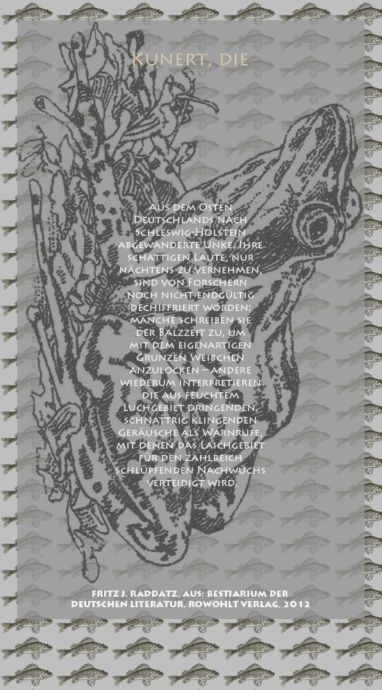 """Bild von Juliane Duda mit den Zeichnungen von Klaus Ensikat und den Texten von Fritz J. Raddatz aus seinem Bestiarium der deutschen Literatur. Hier """"Kunert, die""""."""