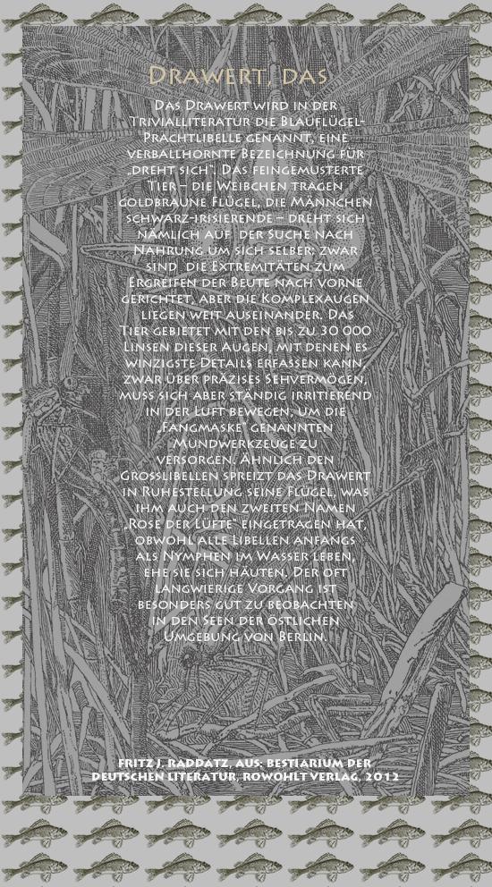 """Bild von Juliane Duda mit den Zeichnungen von Klaus Ensikat und den Texten von Fritz J. Raddatz aus seinem Bestiarium der deutschen Literatur. Hier """"Drawert, das""""."""