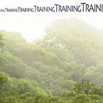 Mashup von Juliane Duda zu dem Buch von Volker Braun: Training des aufrechten Gangs