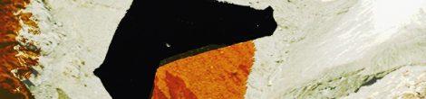 Richard Anders: Das entzweite Gesicht