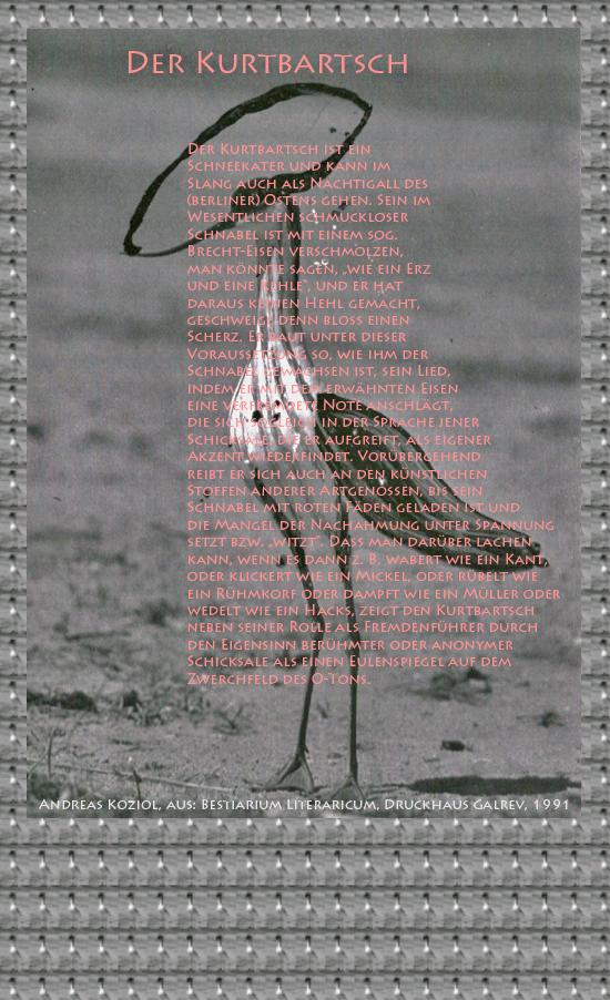 """Bild von Juliane Duda mit den Übermalungen von C.M.P. Schleime und den Texten von Andreas Koziol aus seinem Bestiarium Literaricum. Hier """"Der Kurtbartsch""""."""