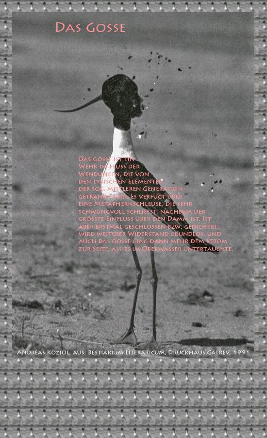 """Bild von Juliane Duda mit den Übermalungen von C.M.P. Schleime und den Texten von Andreas Koziol aus seinem Bestiarium Literaricum. Hier """"Das Gosse""""."""