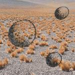 Mashup von Juliane Duda zum Buch von Ilia Kitup: Gibt es Leben auf dem Mars?