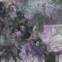 Richard Anders: Über der Stadtautobahn