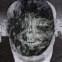 Claes Andersson: Poesiealbum 194