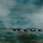Cyrus Atabay: Die Wege des Leichtsinns