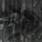 Paul Celan: Poesiealbum 137