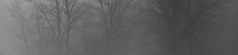 Erich Fried: als ich mich nach dir verzehrte