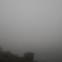 Olly Komenda-Soentgerath: Mit weniger kann ich nicht leben