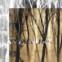Alfred Lichtenstein: Die Dämmerung