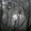 Kito Lorenc: Poesiealbum 143