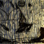 Ernesto Cardenal: Poesiealbum 101